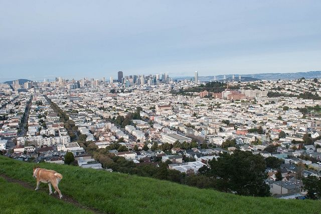 Out & About Lil' Kid: Bernal Heights
